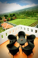 View from Osmond Villa